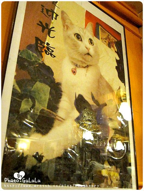 [台北] 寵物餐廳.芝山小貓花園 (葷素